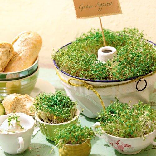 Deko ideen gartenfrische kr uter landidee magazin Tischdeko gastronomie