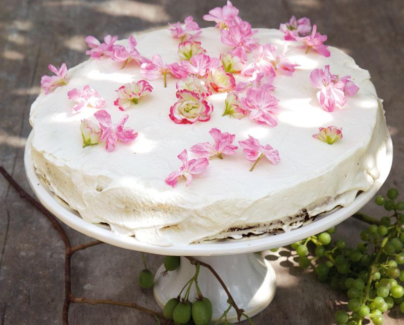 Saftig & lecker: Geranien- Kuchen